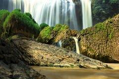 Pedras da cachoeira e do basalto na floresta tropical imagem de stock