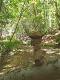Pedras da floresta Foto de Stock