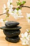 Pedras da terapia Foto de Stock