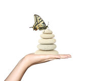 Pedras da terra arrendada da mão e uma borboleta Fotografia de Stock Royalty Free