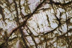 Pedras da textura Imagem de Stock