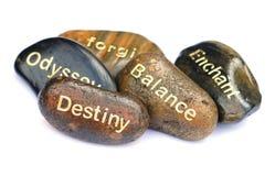 Pedras da vida Imagens de Stock Royalty Free