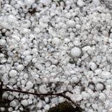 Pedras de granizo na terra após a chuva de granizo, saraiva do grande tamanho, saraiva feita sob medida com uma moeda maior imagem de stock