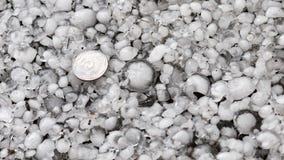 Pedras de granizo na terra após a chuva de granizo, saraiva do grande tamanho, saraiva feita sob medida com uma moeda maior imagens de stock