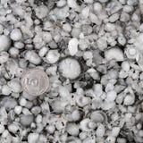 Pedras de granizo na terra após a chuva de granizo, saraiva do grande tamanho, saraiva feita sob medida com uma moeda maior foto de stock royalty free