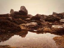 Pedras de Mont Wellington fotografia de stock