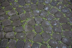 Pedras de pavimentação cinzentas Greypaving cobbled pavimento fotos de stock