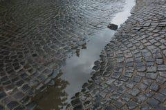 Pedras de pavimentação velhas molhadas após a chuva com a poça da água Fotos de Stock Royalty Free