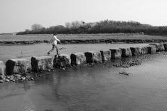 Pedras de piso antigas Fotografia de Stock Royalty Free