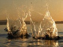Pedras deixando cair na água Foto de Stock Royalty Free