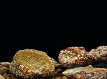 Pedras do mar Imagens de Stock Royalty Free