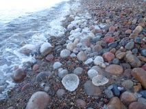 Pedras do mar imagens de stock