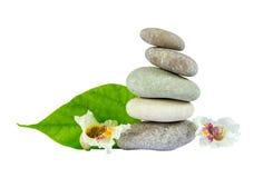 Pedras do mar com a folha isolada no fundo branco Imagens de Stock Royalty Free