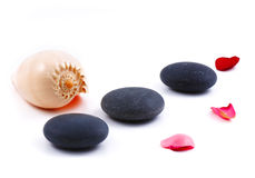 Pedras do Seashell e do zen Foto de Stock Royalty Free