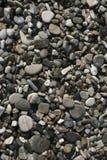Pedras do seixo na praia Fotos de Stock Royalty Free