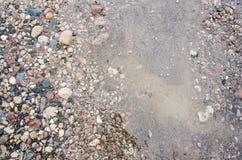 Pedras do seixo pelo mar Teste padrão colorido de Rolling Stone com água que flui na parte superior Pedras do rio com grama verde Fotos de Stock Royalty Free