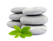 Pedras do zen com folhas Imagem de Stock