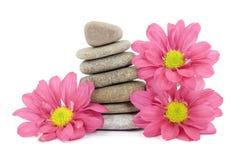 Pedras do zen/termas com flores fotos de stock