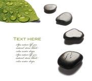 Pedras dos termas com gotas da água Imagens de Stock Royalty Free