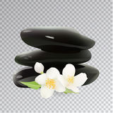 Pedras dos termas com Jasmine Flower Ilustração do vetor Elementos do molde para a loja cosmética, salão de beleza dos termas, bl Fotos de Stock Royalty Free