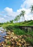 Pedras e árvores de salgueiro no beira-rio fotografia de stock