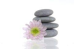 Pedras e flor dos termas fotografia de stock