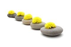 Pedras e flores imagens de stock royalty free
