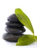 Pedras e folha fotografia de stock