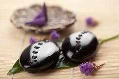 Pedras e folha do zen com gotas da água Fotos de Stock Royalty Free