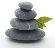 Pedras e folhas Fotografia de Stock Royalty Free