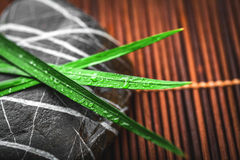 Pedras e folhas do zen Foto de Stock