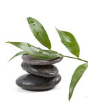 Pedras e folhas do zen com água imagens de stock royalty free