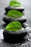 Pedras e folhas do zen com gotas da água fotografia de stock royalty free
