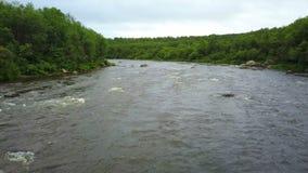 Pedras e ondas na água rápida do rio de Pechenga na parte nortenha de Rússia video estoque