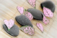 Pedras e pétalas Imagem de Stock Royalty Free