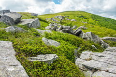 Pedras e pedregulhos na cordilheira Carpathian Imagem de Stock Royalty Free