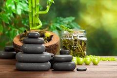 Pedras e plantas dos termas Fotografia de Stock Royalty Free