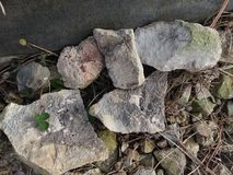 Pedras e rochas com fósseis fotos de stock