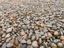 Pedras em uma praia Imagem de Stock