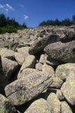 Pedras em Vitosha imagem de stock royalty free