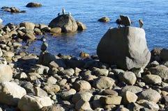 Pedras empilhadas pelo oceano fotos de stock royalty free