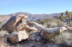 Pedras enormes no deserto de Califórnia Imagem de Stock Royalty Free