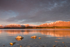 Pedras ensolarados na água pouco profunda do lago Tekapo no por do sol Imagens de Stock