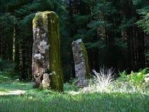 Pedras eretas Imagens de Stock Royalty Free