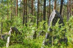 Pedras grandes na linha da segunda guerra mundial, região da defesa de Leninegrado, Rússia imagem de stock