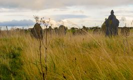 Pedras graves Fotografia de Stock