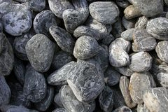 Pedras marinhas bonitas Foto de Stock