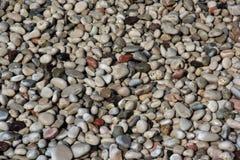 Pedras molhadas do mar Foto de Stock