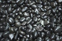 Pedras molhadas lisas do jardim Fotos de Stock Royalty Free