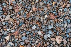 Pedras molhadas no parque na estrada, pedras de pavimentação Na cidade pelo wayside Pedregulhos coloridos do dia do outono Foto de Stock Royalty Free
